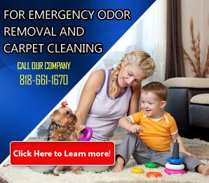 Our Services - Carpet Cleaning Northridge, CA